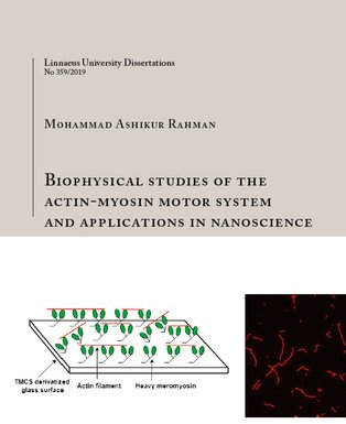 Front cover of M.A. Rahman's doctoral thesis titled Biophysical studies of the Actin-Myosin Motor System and Applications in Nanoscience