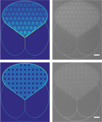 Nanoimprint lithography patterns for biocomputation devices