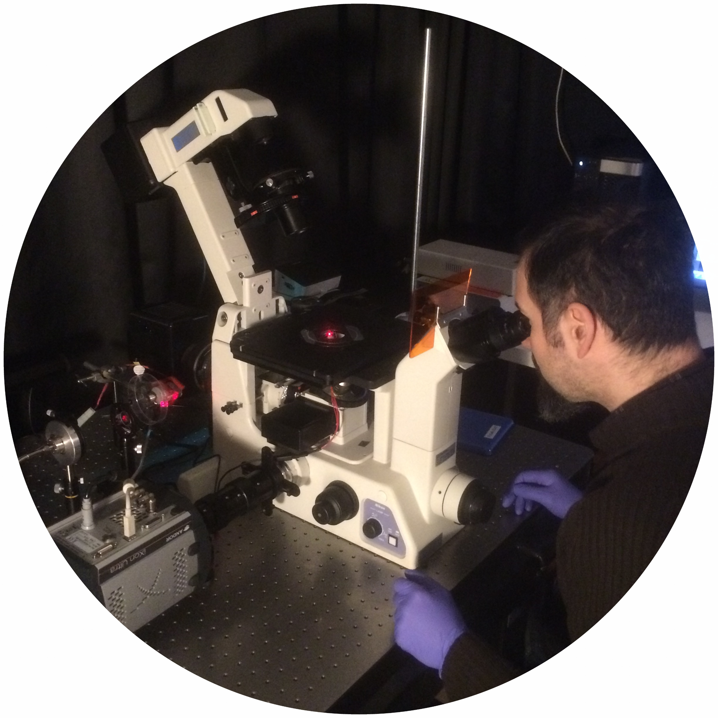 Microscope in the Lab at Linnaeus University